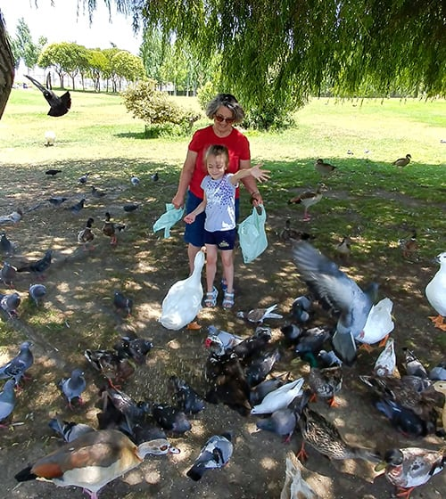 Feeding ducks at the park